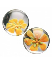 Bolas de ben wa de cristal Asvani Glass Ben Wa Balls